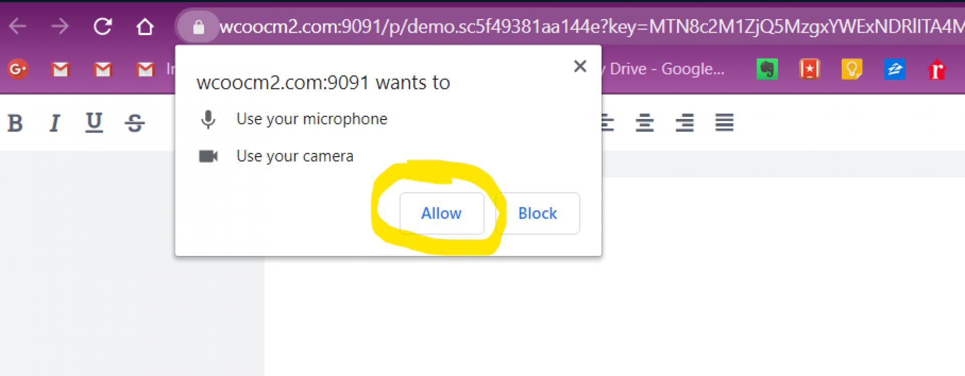 """A browser request to accept the use of a camera and microphone with """"Allow"""" circled."""